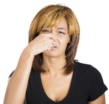 Smelly odors may indicate bacteria-type water problems